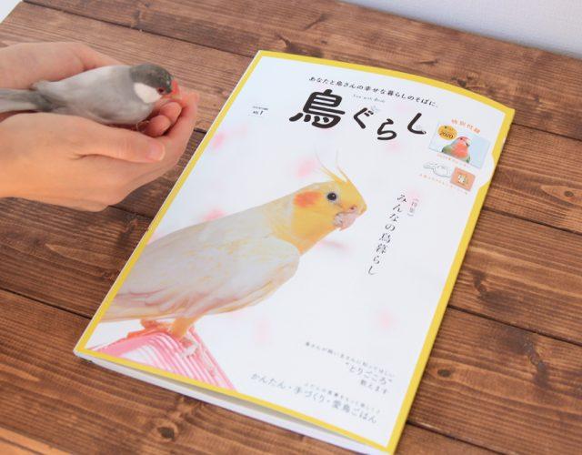 鳥ぐらし:torinotorio
